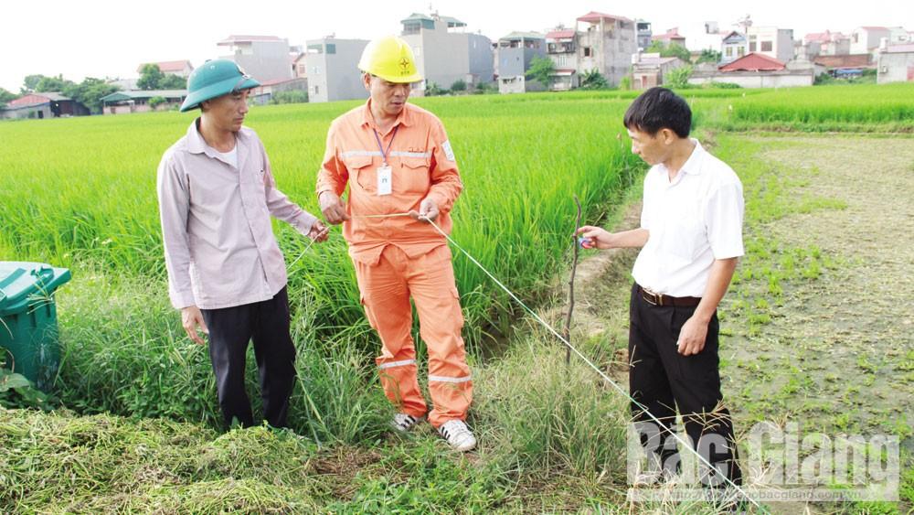 Tràn lan vi phạm an toàn điện